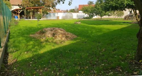 Školní zahrada sbylinkami avenkovní učebnou