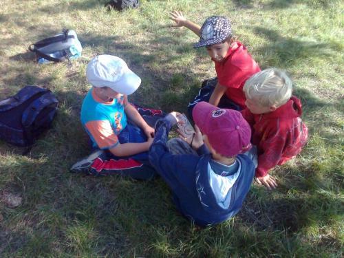 cvičení vpřírodě - práce skupinek