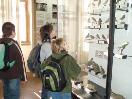 Národní muzeum - sezájmem prohlížíme expozice.